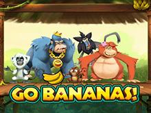 На игровом портале рекордный джек-пот Вперед Бананы
